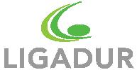 logo-ligadur